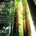 沢井製薬/オンコロジー